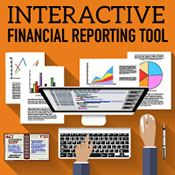 Interactive Financial Reporting Tool