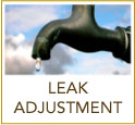 Leak Adjustment Request